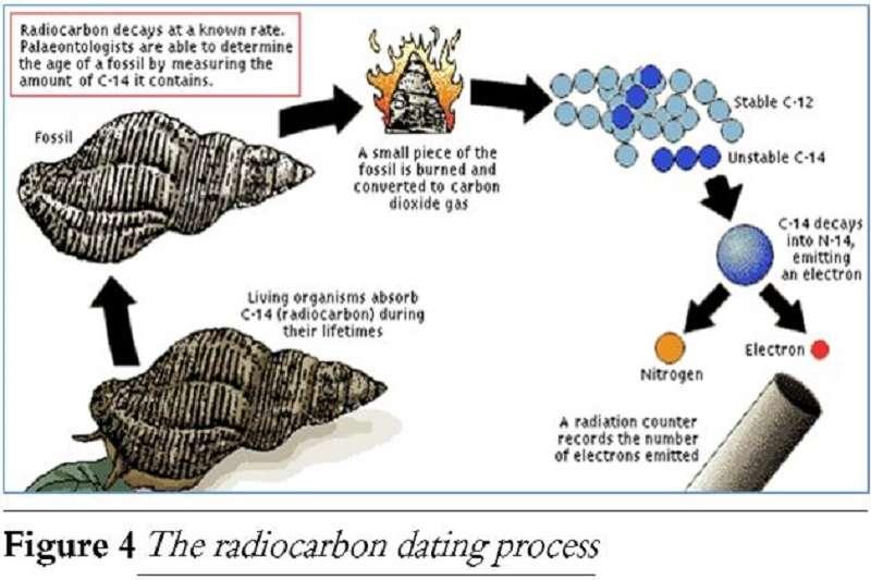 carbon dating for fossiler aktau dating